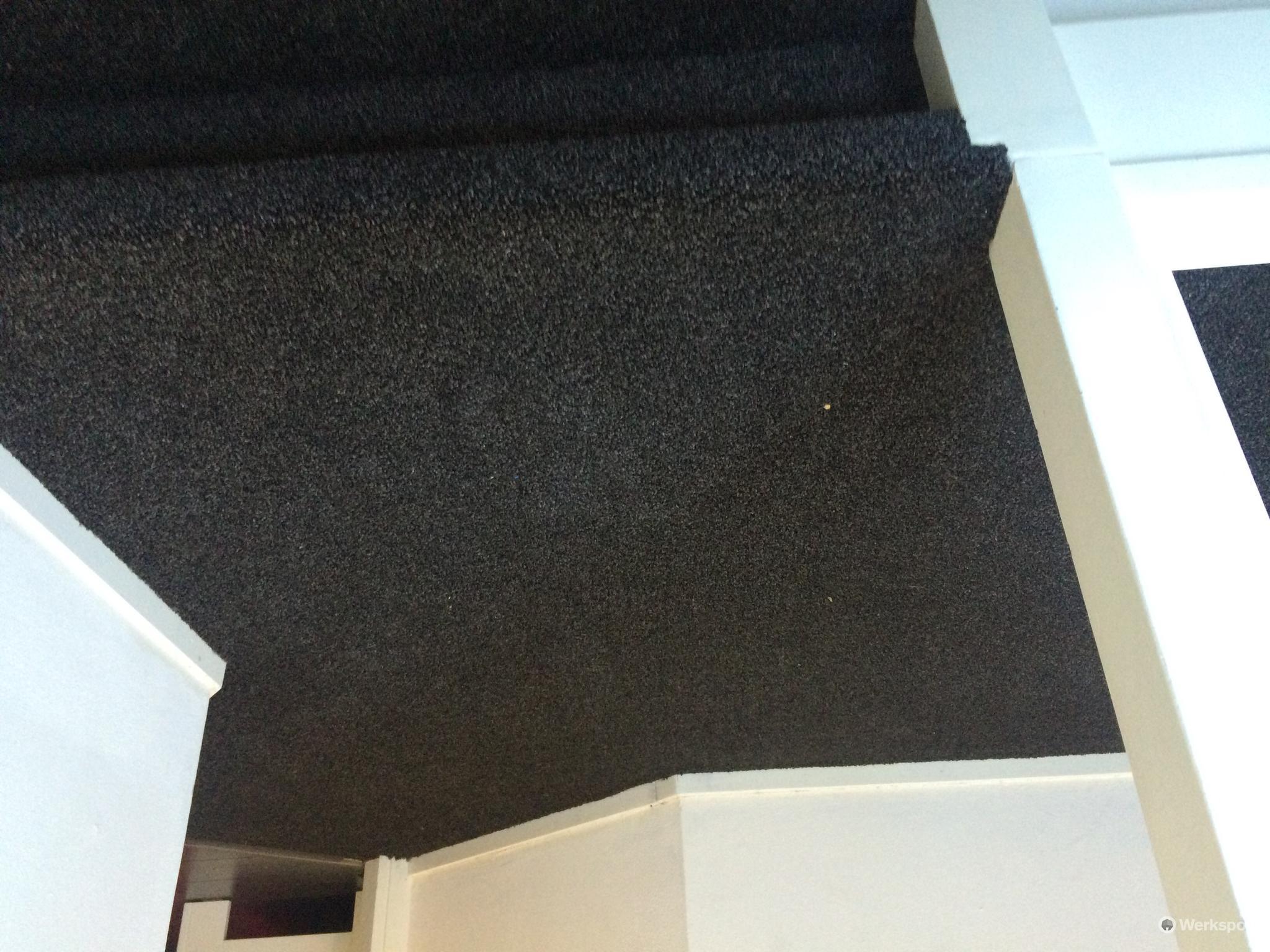 Trap en hal voorzien van goede vloerbedekking werkspot