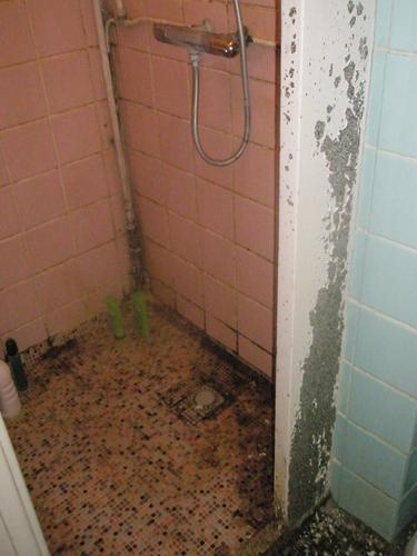 Complete renovatie van kleine badkamer (2 vierkante meter) - Werkspot