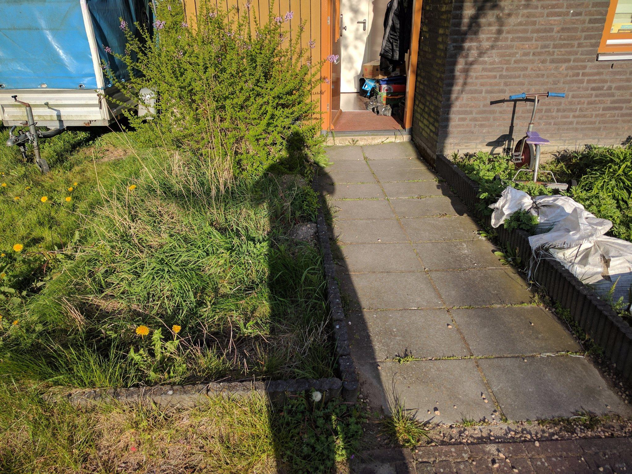 Tuin opknappen 20m2 werkspot for Tuin opknappen