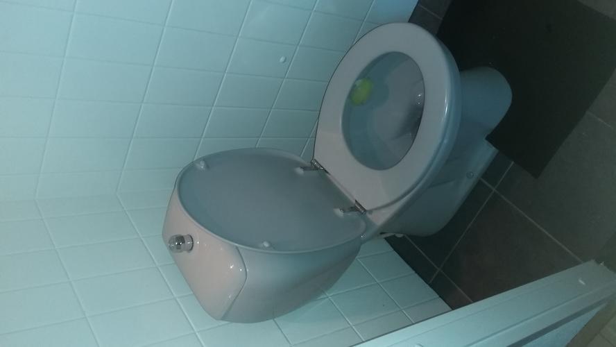 Staand Toilet Vervangen : Staand toilet vervangen voor hangend toilet werkspot