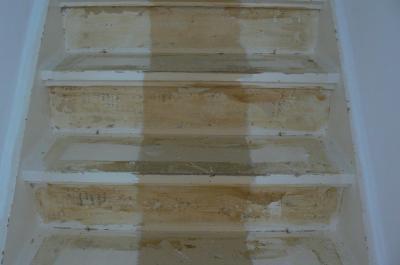 Trap schuren en lakken lijmresten verwijderen werkspot for Trap kaal maken