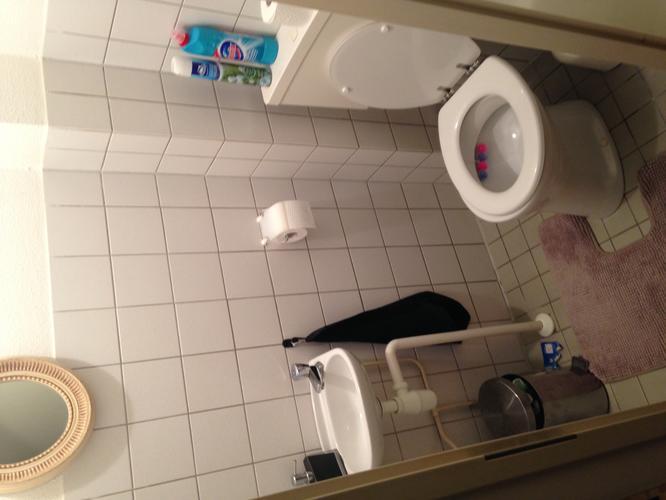 Staand Toilet Vervangen : Staand toilet vervangen voor een hangend toilet werkspot