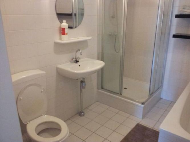 Badkamer renovatie tegelen inbouwtoilet douchecabine werkspot