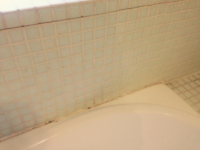 Mozaïek badkamer opnieuw voegen/ voegen herstellen - Werkspot