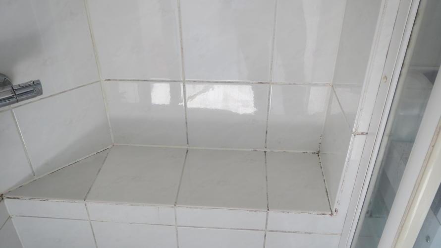 Voegen en kitranden van bestaande douche vervangen / vernieuwen ...