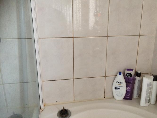 Voegen verwijderen en opnieuw voegen van deel tegels in badkamer + ...