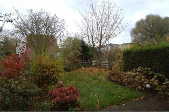 Kosten Betegelen Tuin : Kosten tuin leegruimen bestraten beplanten werkspot