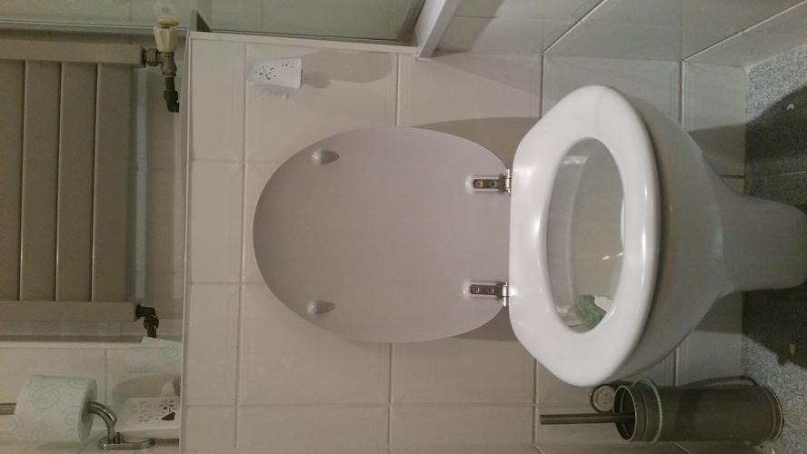 Voorkeur Geberit hangtoilet vervangen binnenwerk of advies hierin - Werkspot OA06
