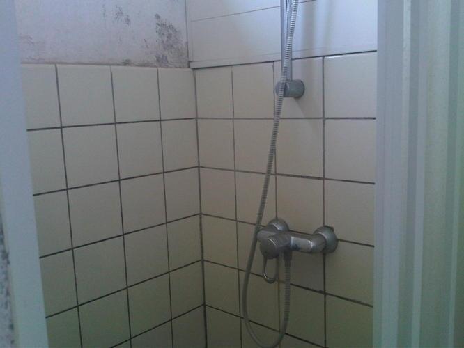 Kunststof Tegels Badkamer : Kunststof platen voor douche