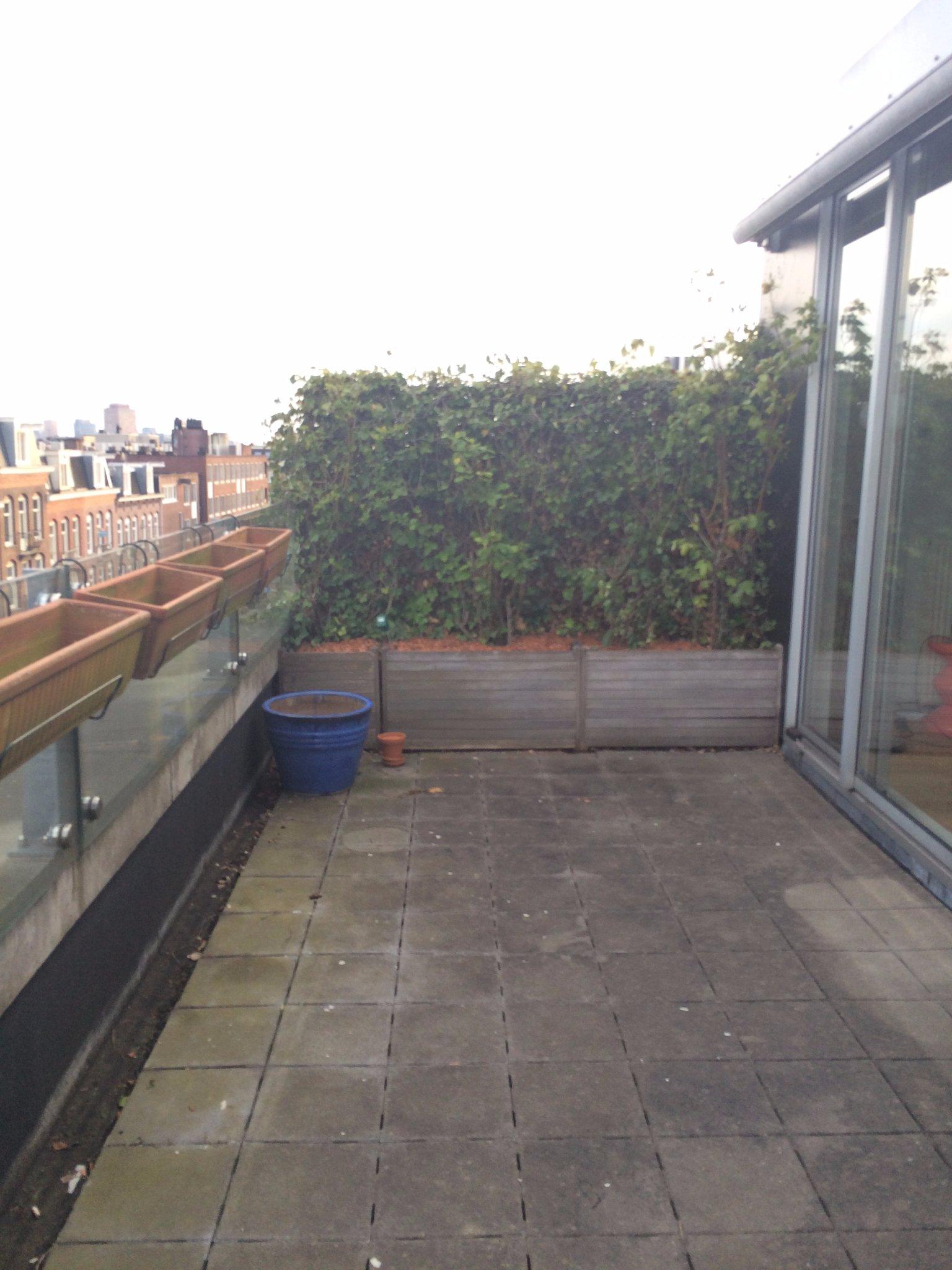 Amsterdam tuinontwerp advies balkon werkspot for Tuinontwerper gezocht