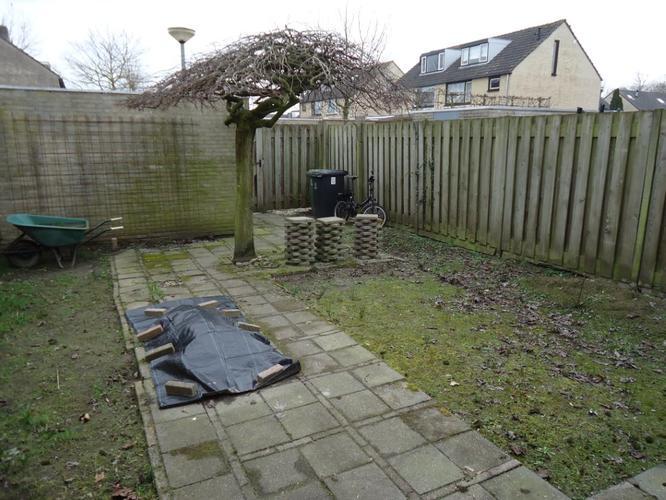 Grind Tuin Aanleggen : Voortuin verwijderen beplanting aanleg grindtuin plus voetpad