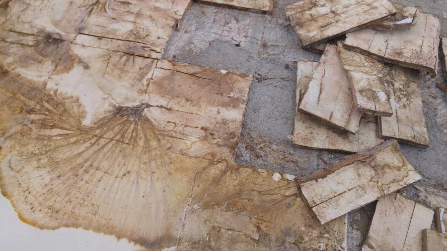 Reparatie houten vloer met waterschade werkspot