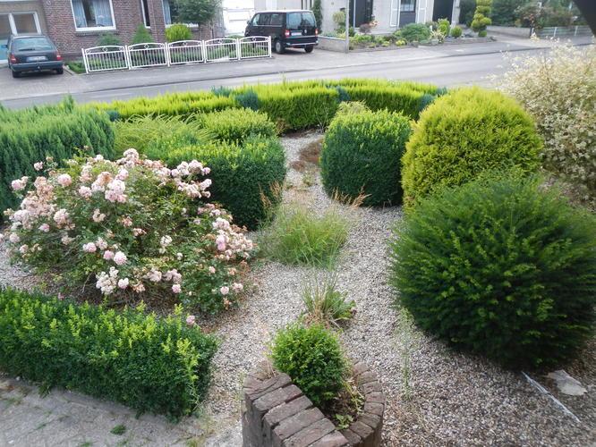 Goedkope tuinman gezocht werkspot