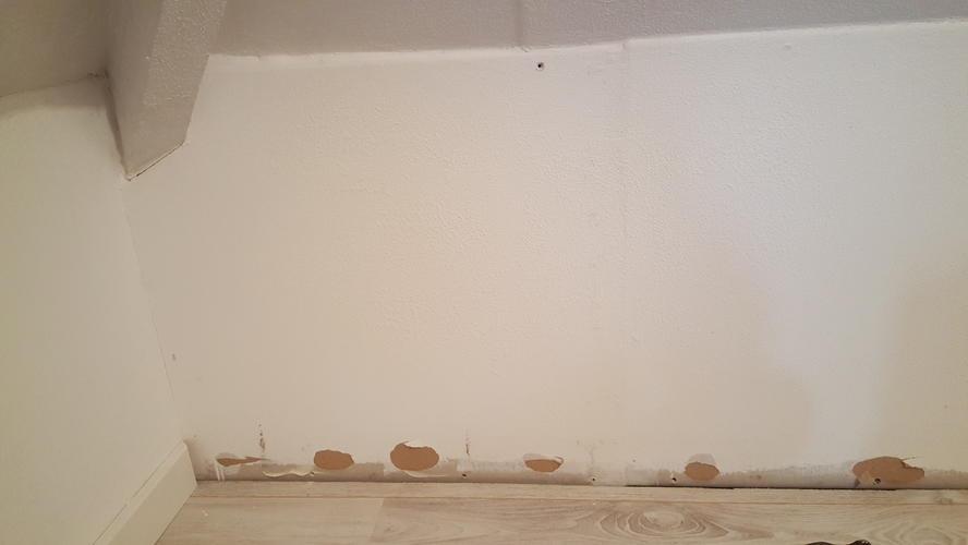 Verwijderen oude en leggen nieuwe vloer ivm waterschade werkspot