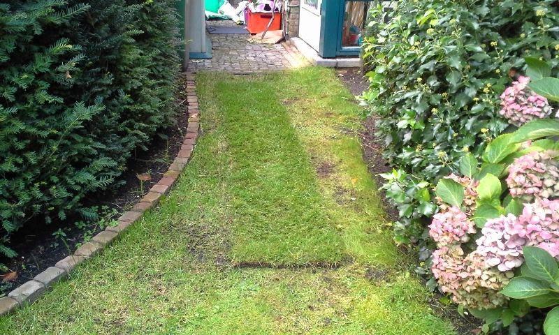New Gras vervangen door stenen - Werkspot FZ34