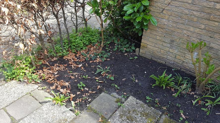 Zijkanten tuin netjes afwerken met grind werkspot