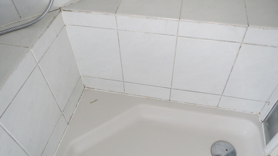 Voegen Vervangen Badkamer : Schimmel voegen badkamer mooihuis schimmel plafond badkamer