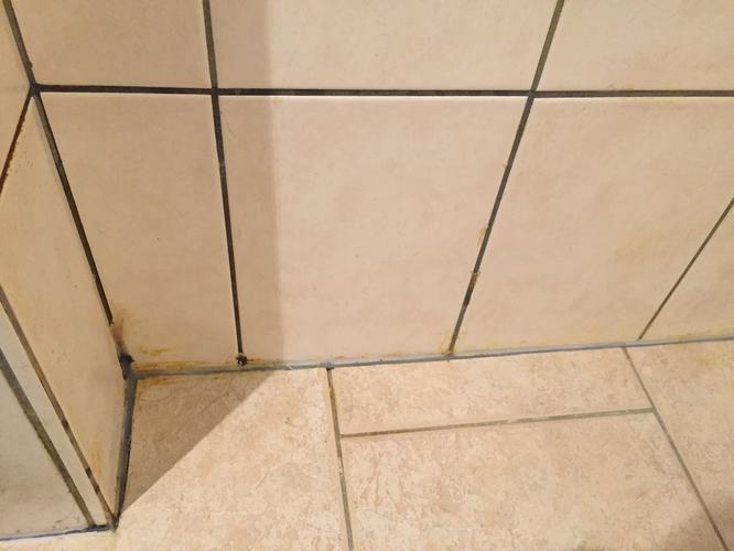 douche opnieuw voegen en waterdicht maken ivm slecht onderhoud vori ...