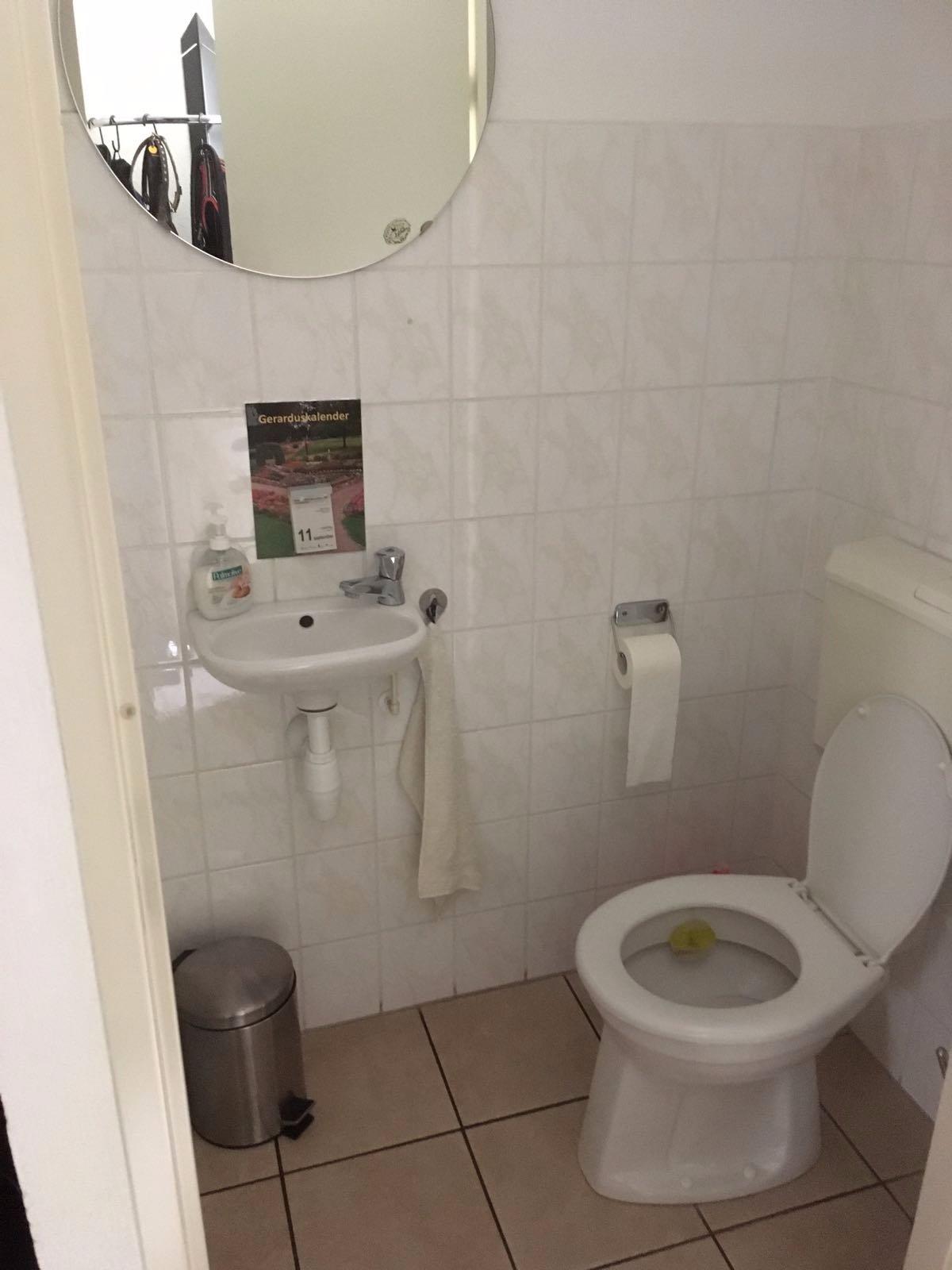 Plaatsen Hangtoilet, betegelen vloer / wand toilet en badkamer ...