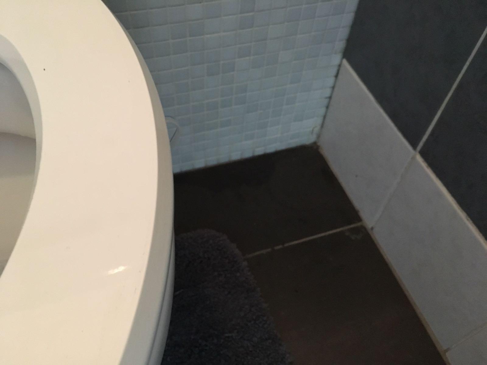 Lekkage badkamer wc werkspot
