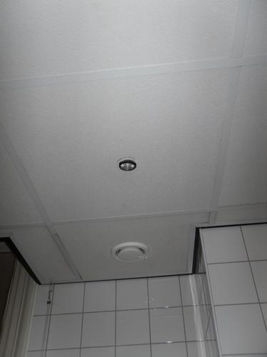 Vervangen plafond met spotjes in badkamer door gipsplaat - Werkspot