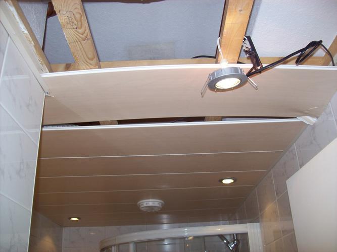 27 okt. kunstof plafond in douche vervangen - Werkspot