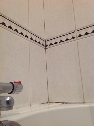 Kleine badkamer volledig kitten, vervangen/repareren enkele voegen ...