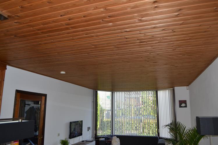 Schrootjes plafond