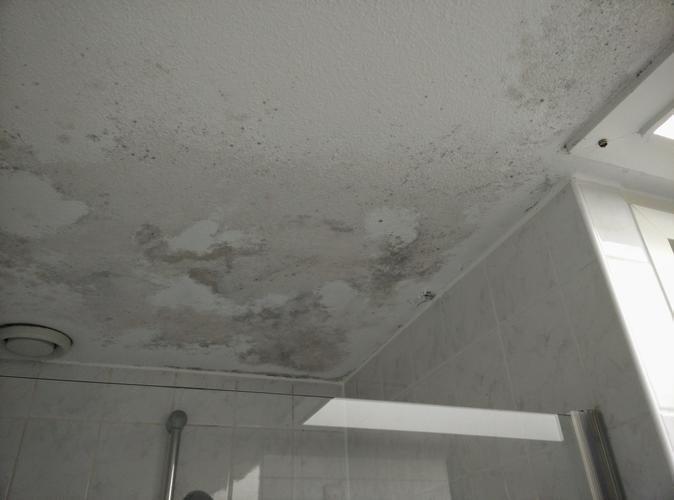 Schilderen badkamer plafond/herstellen pleisterwerk schimmelvrij ma ...