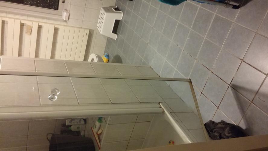 Badkamer gedeeltelijk renoveren werkspot