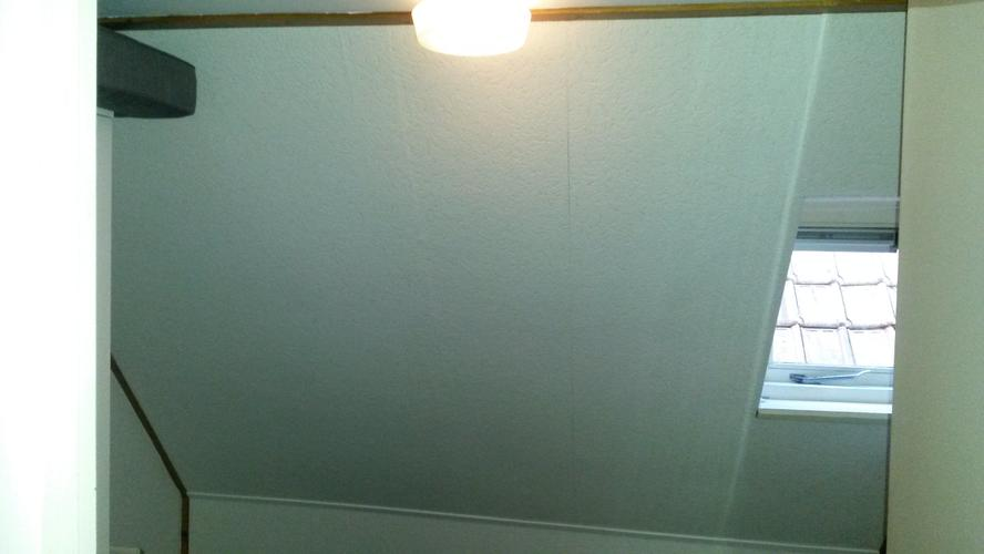 Dakraam In Badkamer : Dakraam inbouwen en raam badkamer vervangen werkspot