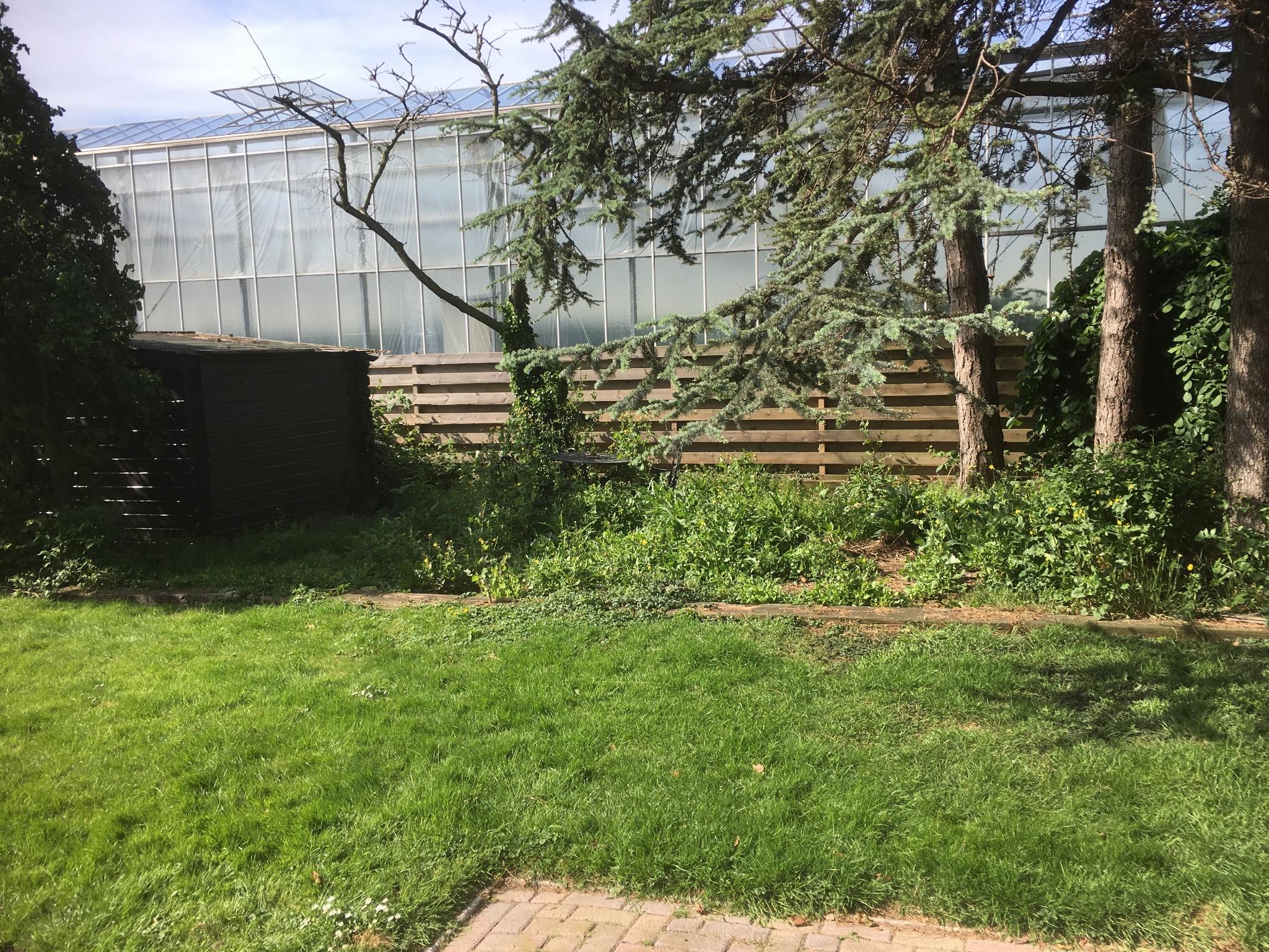 Tuin opknappen honselersdijk werkspot for Tuin opknappen