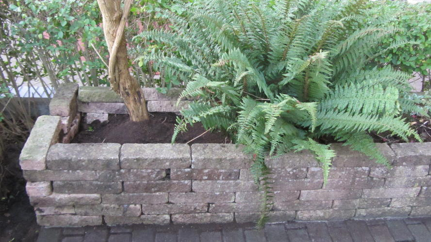Top muurtje van gelijmde bakstenen rechtzetten (los bikken en opnieuw &JO02