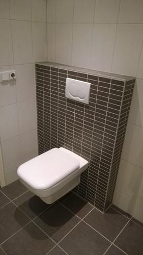 douche achterwand en stuk achter toilet opnieuw tegelen, voegen en ...