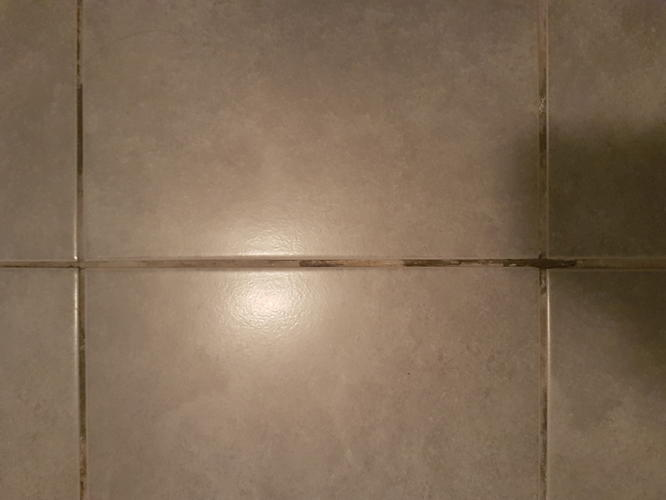 Opnieuw voegen toilet en douche vloer ivm afbrokkelende voegen ...