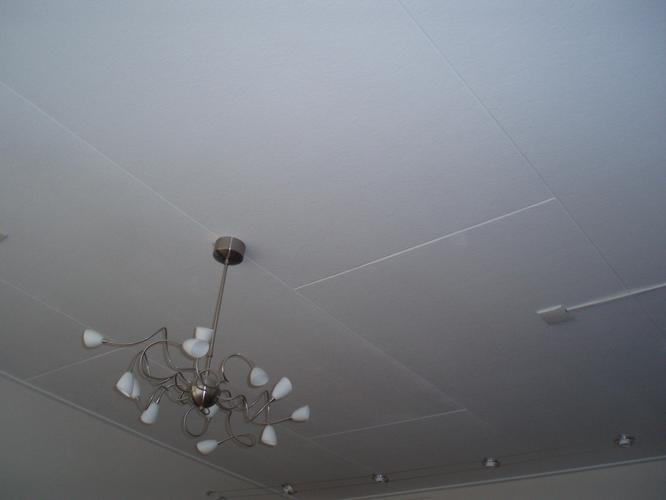 Extreem zachtboard plafond vervangen - Werkspot ZR29