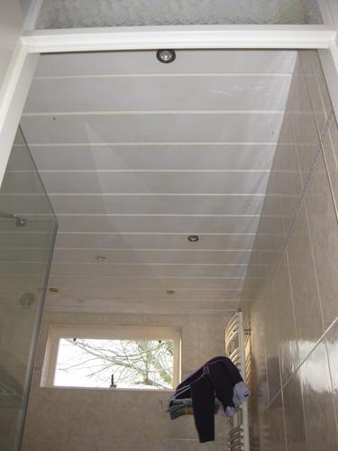 Plafond badkamer vervangen - Werkspot