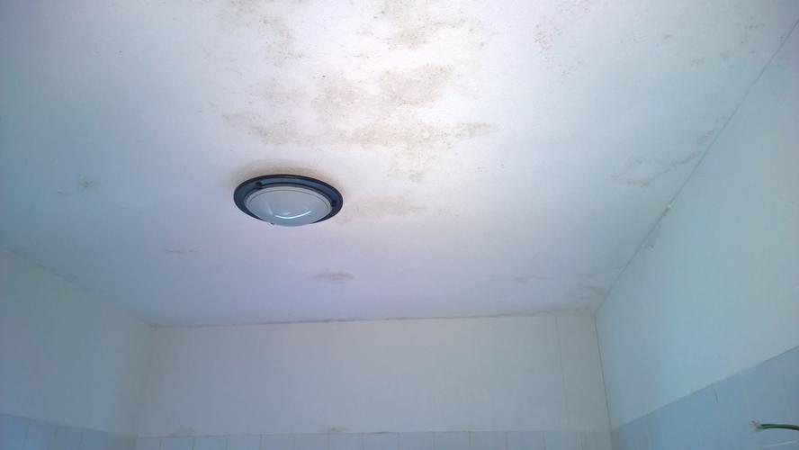 Opnieuw stucen plafond badkamer wegens schimmel - Werkspot