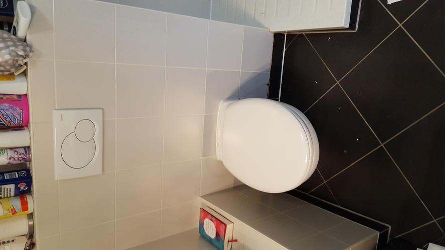 Frontplaat Hangend Toilet : Verhelpen lekkage toilet plaatsen nieuw frontplaat afwerking