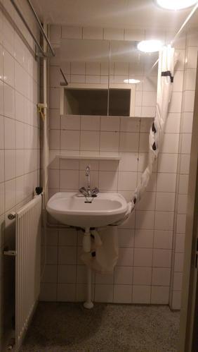 Betegelen badkamer, wegwerken leidingen, plaatsen douche + wasbak ...