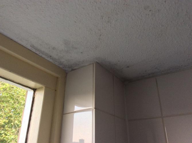 badkamer plafond herstellen en sauzen werkspot