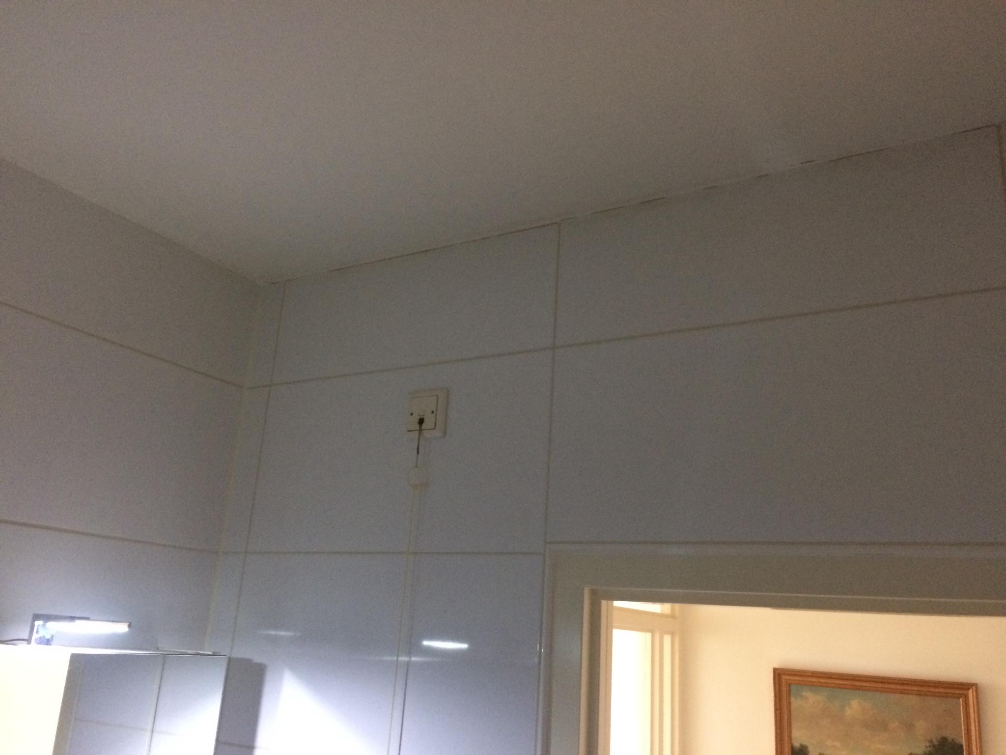 Badkamer plafond egaliseren latexen en rondom afkitten werkspot