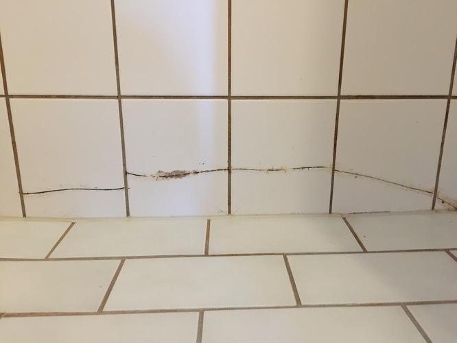 Tegels Badkamer Vervangen : Enkele kapotte tegels vervangen badkamer werkspot