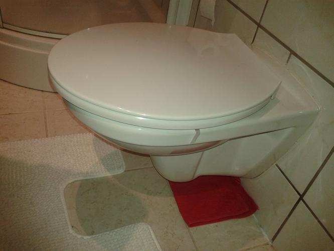 Top Lekkage bij hangend toilet - Werkspot MW65