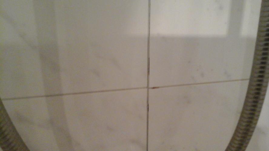 Badrand opnieuw kitten, voegen douche herstellen, doorlopen wc\'s ve ...