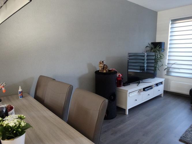 Grijze spachtelputz lichtbruin verven spuiten ongeveer Welke muur verven woonkamer