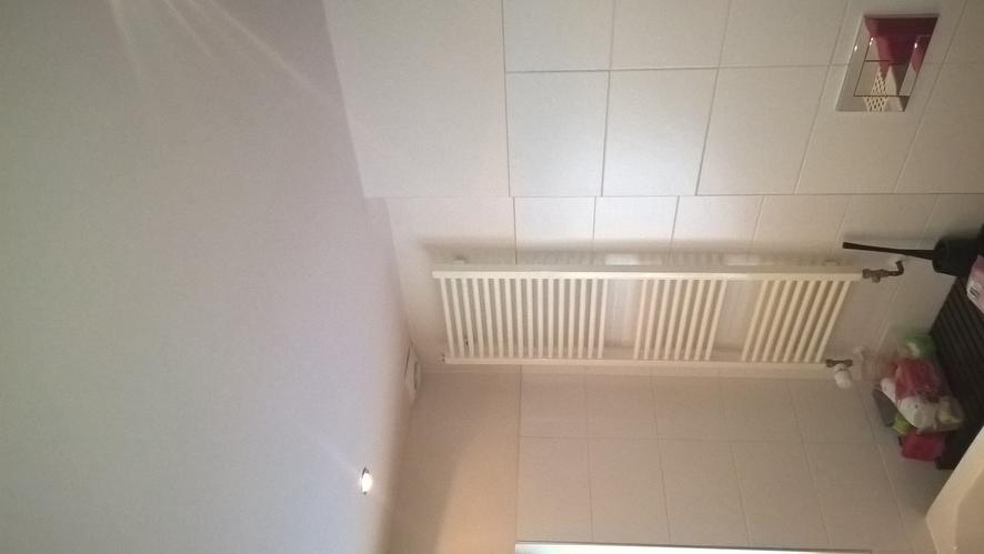 Schilderen kitten plafond badkamer werkspot