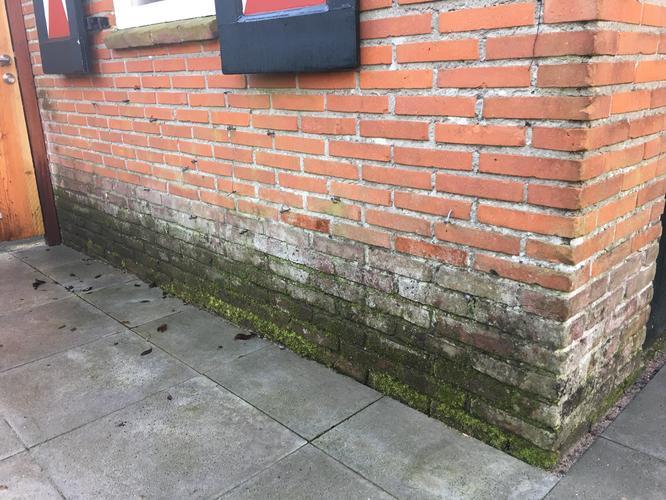 Stenen Muur Voortuin : Schoonmaken restaureren muur en stenen omheining voortuin