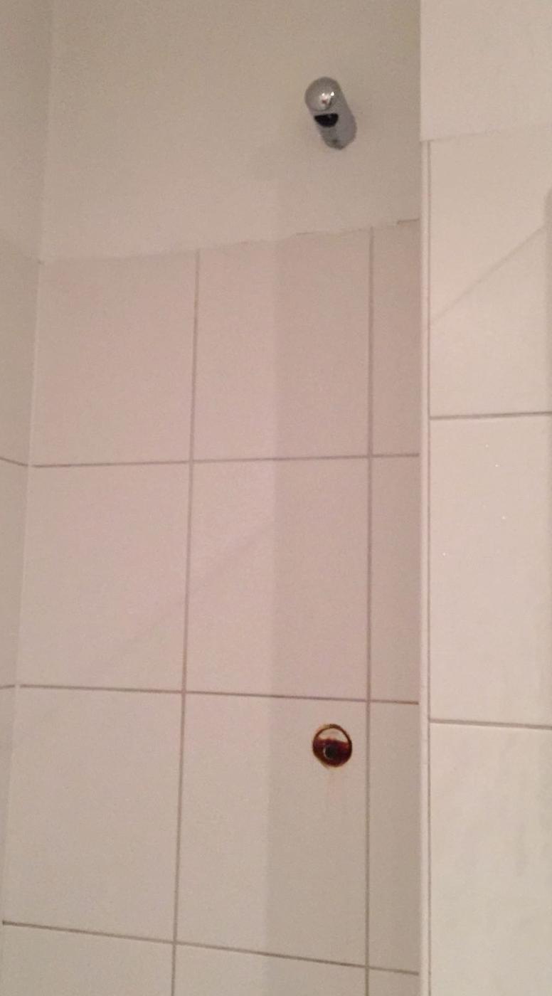 Nieuwe douchestang of oude herstellen in badkamer + error Boiler ...