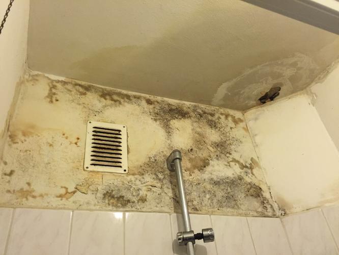 stucen/schilderen wanden plafond badkamer, hal, toilet nieuw, Badkamer